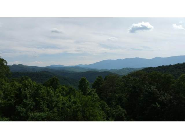 Tbd Carvers Knob Road, Little Switzerland, NC 28749 (MLS #9916929) :: Red Door Agency, LLC