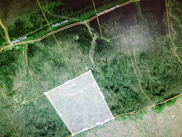 000 Clinch Mtn Road, Eidson, TN 37731 (MLS #9916937) :: Red Door Agency, LLC
