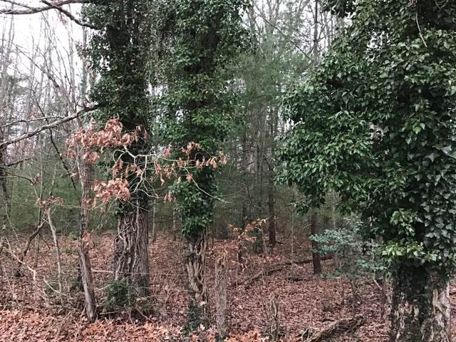 Tbd Hall Avenue Sw Avenue, Wise, VA 24293 (MLS #9917025) :: Conservus Real Estate Group