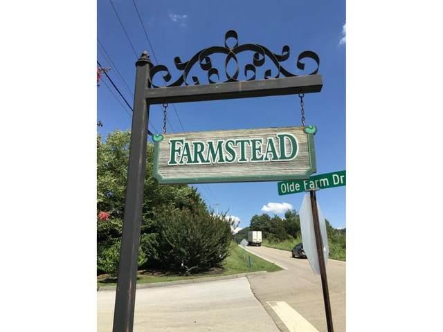 137 Olde Farm Drive, Jonesborough, TN 37659 (MLS #9917028) :: The Lusk Team