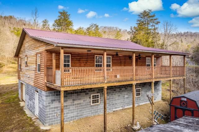 6656 Caney Valley Road, Tazewell, TN 37879 (MLS #9917058) :: Red Door Agency, LLC