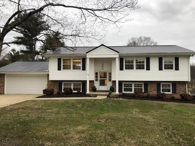 110 Hazelwood Drive, Gray, TN 37615 (MLS #9917059) :: Highlands Realty, Inc.