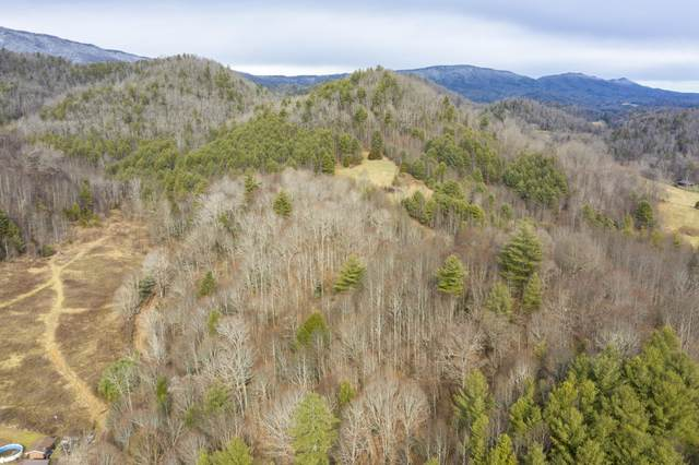 Tbd Henry Stout Branch Road, Butler, TN 37640 (MLS #9917092) :: The Lusk Team
