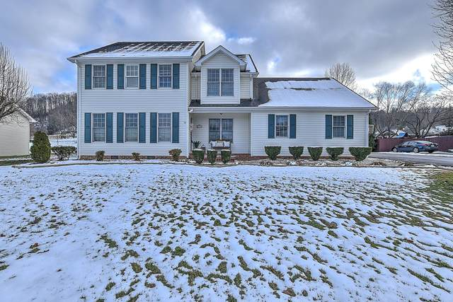 21192 Vances Mill Road, Abingdon, VA 24211 (MLS #9917225) :: The Lusk Team