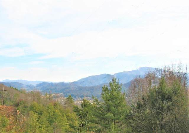 156 Rock Quarry Road, Roan Mountain, TN 37687 (MLS #9917234) :: Bridge Pointe Real Estate