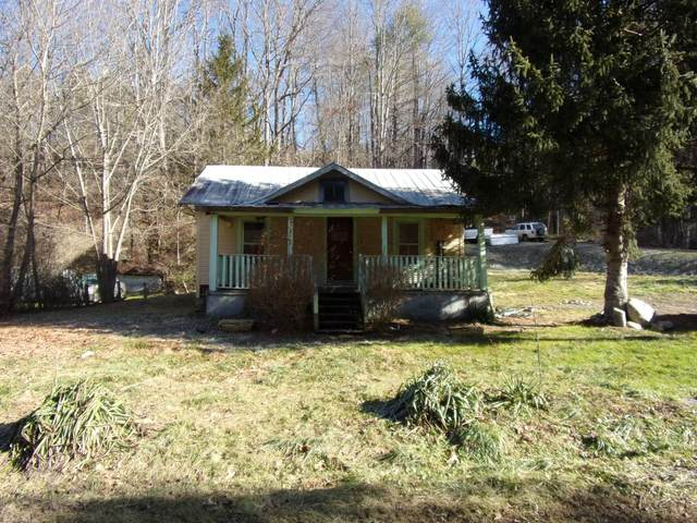 203 Hampton Creek Rd, Roan Mountain, TN 37687 (MLS #9917324) :: Bridge Pointe Real Estate