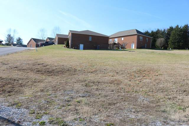 209 Farmington Drive, Greeneville, TN 37743 (MLS #9917327) :: The Lusk Team