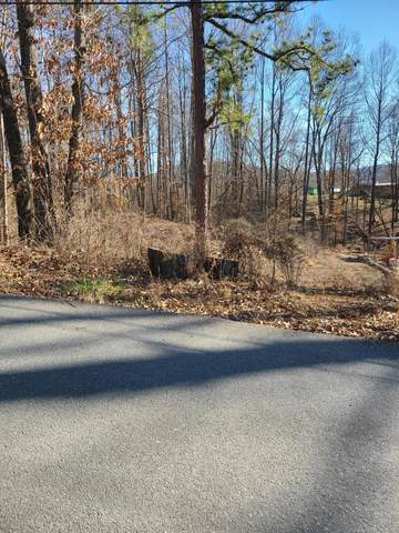 Lot 38 &39 Horseshoe Drive, Johnson City, TN 37601 (MLS #9917330) :: Bridge Pointe Real Estate