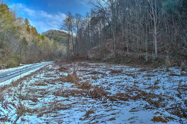 Tbd Lone Star Rd Road, Bristol, VA 24202 (MLS #9917347) :: The Lusk Team