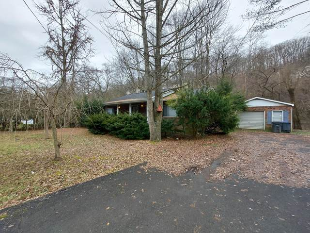 1100 Tranbarger Drive, Kingsport, TN 37660 (MLS #9917378) :: Bridge Pointe Real Estate