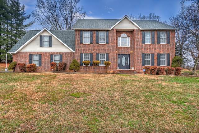 120 Carol Lane, Blountville, TN 37617 (MLS #9917387) :: Conservus Real Estate Group