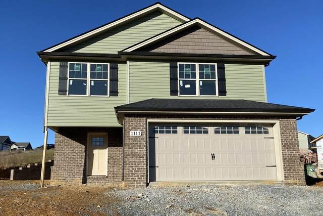 1111 Lemongrass Drive, Jonesborough, TN 37659 (MLS #9917431) :: Conservus Real Estate Group