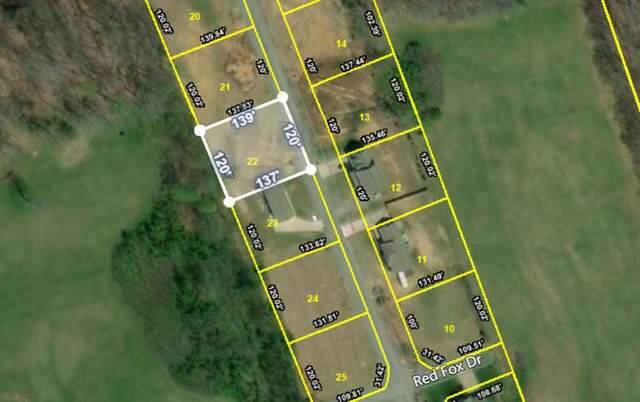 179 Fox Ridge Drive, Mount Carmel, TN 37645 (MLS #9917436) :: Red Door Agency, LLC