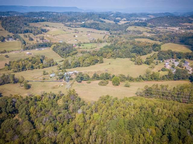 555 Double Springs Road Road, Jonesborough, TN 37659 (MLS #9917456) :: Conservus Real Estate Group