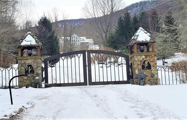 Tbd Windcrest Trail, Roan Mountain, TN 37687 (MLS #9917471) :: Conservus Real Estate Group