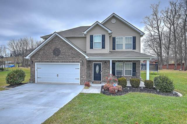 2031 Allison Heights Road, Piney Flats, TN 37686 (MLS #9917489) :: Bridge Pointe Real Estate