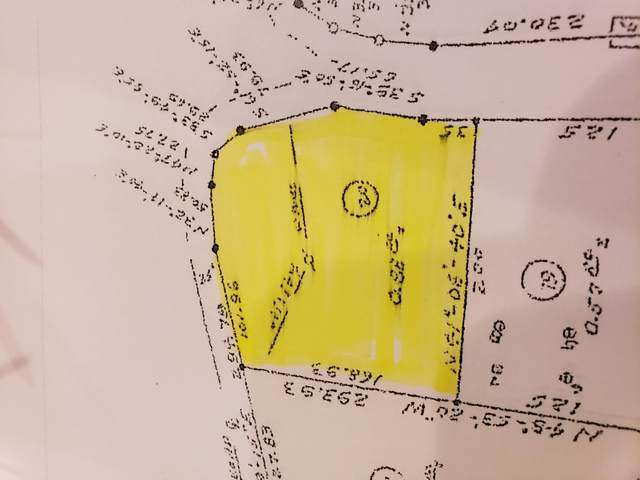 Lot 20 Whitehouse Road, Greeneville, TN 37745 (MLS #9917547) :: Conservus Real Estate Group