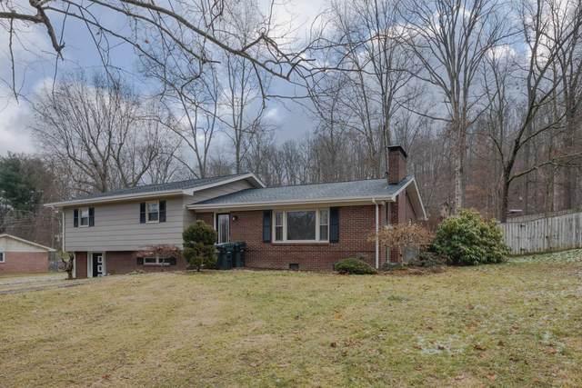 317 Georgia Street, Bristol, VA 24201 (MLS #9917575) :: Conservus Real Estate Group