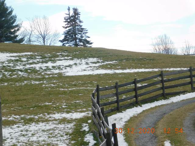 Tbd Fruit Tree, Coeburn, VA 24230 (MLS #9917595) :: Highlands Realty, Inc.