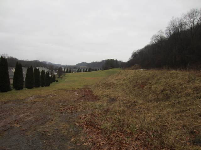 Tbd Wallace Meadows Way, Bristol, VA 24202 (MLS #9917638) :: Highlands Realty, Inc.