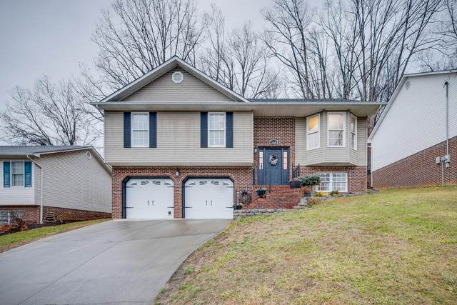 1028 Carrington Court, Kingsport, TN 37660 (MLS #9917691) :: Conservus Real Estate Group