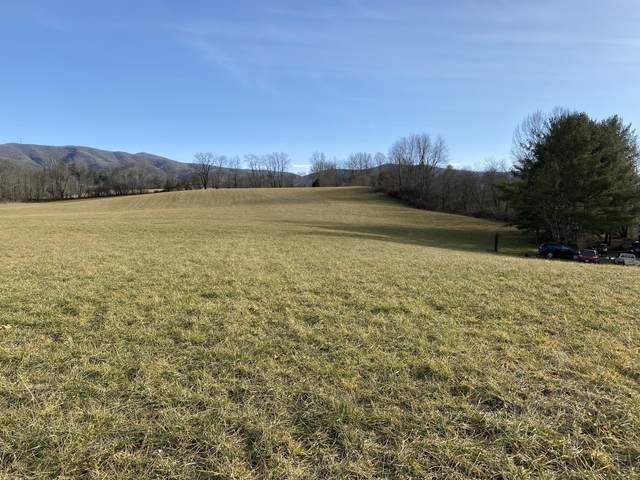 000 Crackers Neck Road, Mountain City, TN 37683 (MLS #9917701) :: Highlands Realty, Inc.
