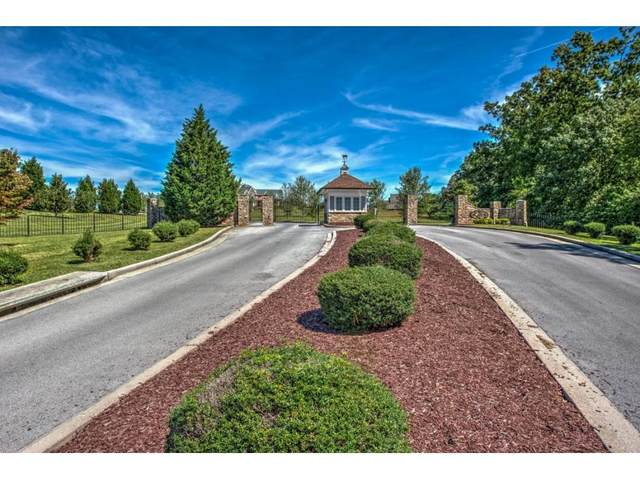 1104 Mountain Vista Pvt Drive, Bristol, TN 37620 (MLS #9918075) :: Conservus Real Estate Group