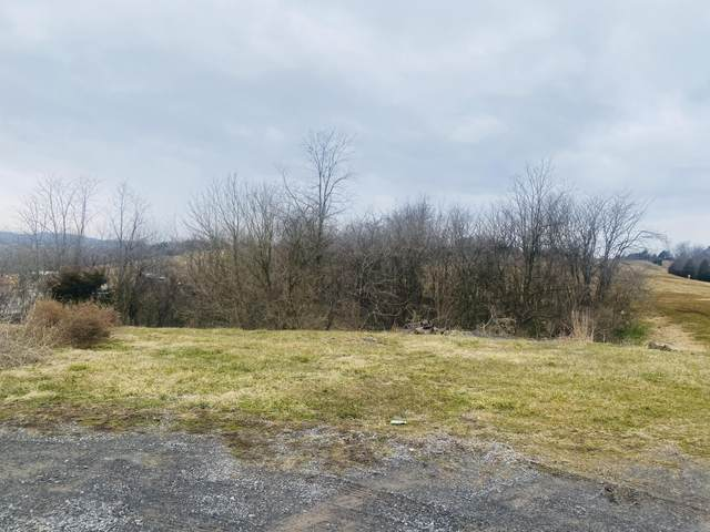 121 Counts Drive, Castlewood, VA 24224 (MLS #9918227) :: Bridge Pointe Real Estate
