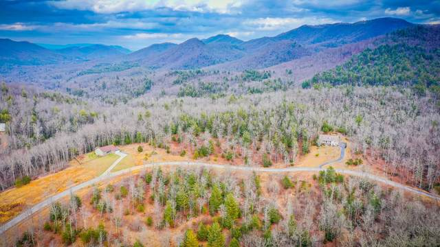 Tbd Homestead Drive, Unicoi, TN 37692 (MLS #9918240) :: Conservus Real Estate Group