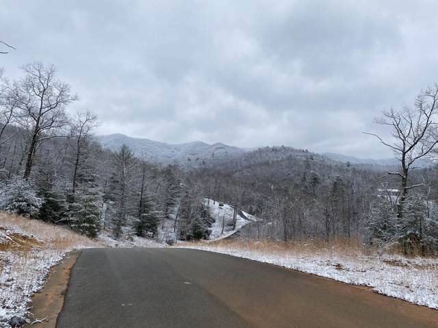 Tbd Homestead Drive, Unicoi, TN 37692 (MLS #9918244) :: Conservus Real Estate Group