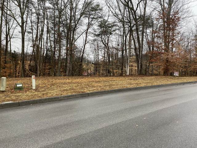 2011 Scenic Pointe Place, Church Hill, TN 37642 (MLS #9918260) :: Conservus Real Estate Group