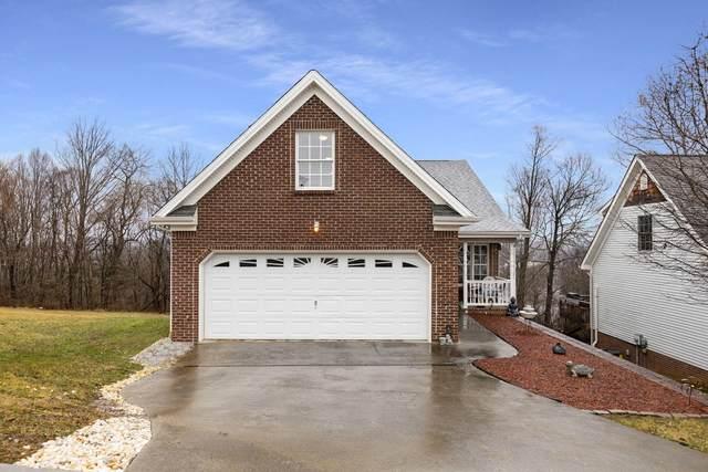 18 Taylor Ridge Court, Johnson City, TN 37601 (MLS #9918335) :: Bridge Pointe Real Estate