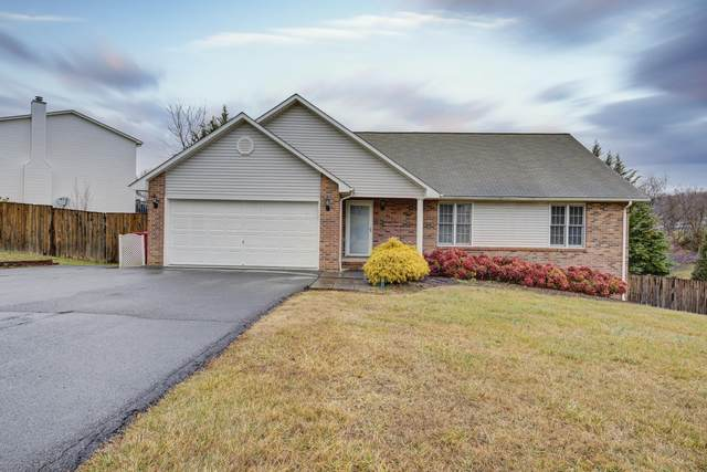 4132 Bradford Lane, Johnson City, TN 37601 (MLS #9918348) :: Bridge Pointe Real Estate