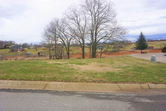 101 Anchor Point, Blountville, TN 37617 (MLS #9918505) :: Tim Stout Group Tri-Cities