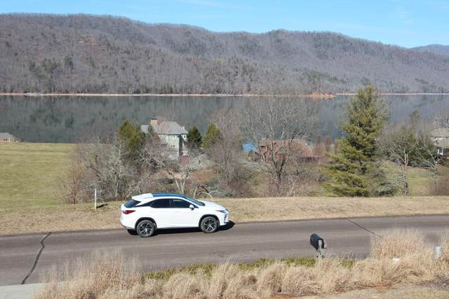 000 Harbour View Road, Butler, TN 37640 (MLS #9918643) :: Tim Stout Group Tri-Cities