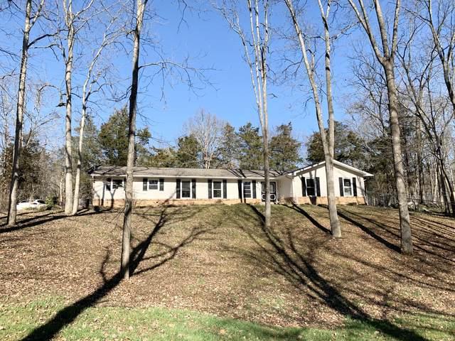 229 Castaway Drive Drive, Kingsport, TN 37663 (MLS #9918649) :: Red Door Agency, LLC