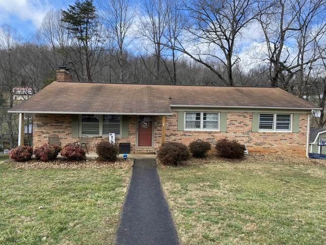 217 Lonewood Drive, Kingsport, TN 37663 (MLS #9918665) :: Red Door Agency, LLC
