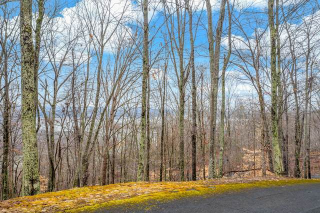 404 Forest Lane, Mooresburg, TN 37811 (MLS #9918673) :: Tim Stout Group Tri-Cities