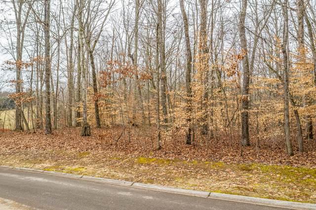 Lot 34 Blount Circle, Rutledge, TN 37861 (MLS #9918676) :: Red Door Agency, LLC