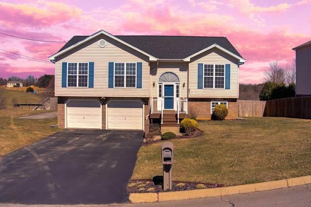 201 Bethany Drive, Jonesborough, TN 37659 (MLS #9918751) :: Red Door Agency, LLC