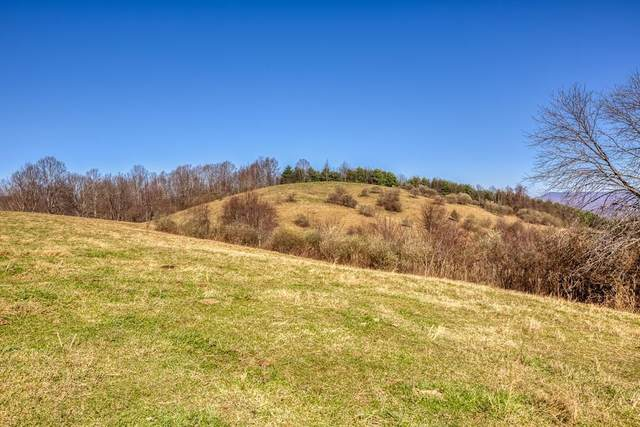 Tbd Chip Ridge Road, Abingdon, VA 24210 (MLS #9918804) :: Conservus Real Estate Group