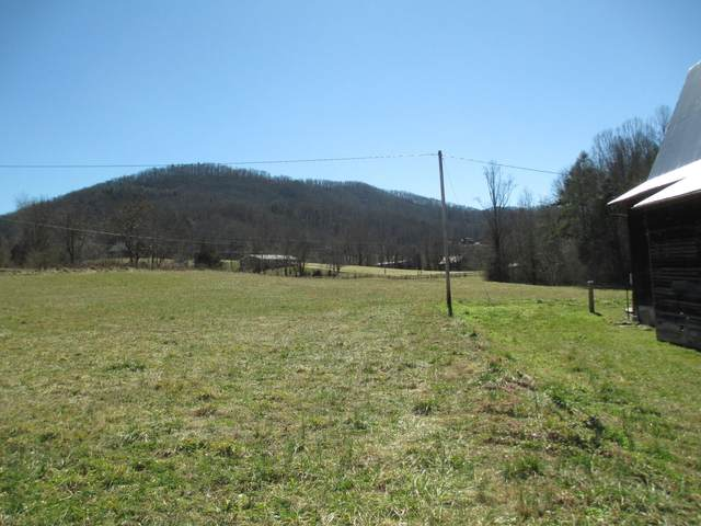 Tbd Houston Valley Road, Greeneville, TN 37743 (MLS #9918808) :: Red Door Agency, LLC