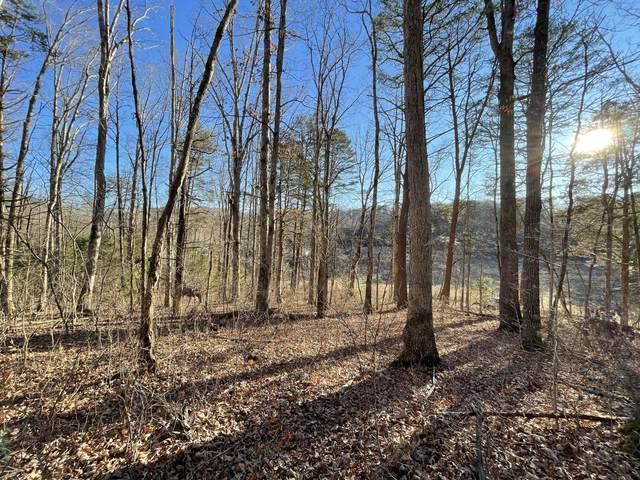 0 Fairfax Road, Parrotsville, TN 37843 (MLS #9918863) :: Highlands Realty, Inc.