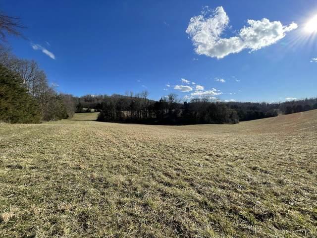 0 Good Hope Road, Parrotsville, TN 37843 (MLS #9918868) :: Highlands Realty, Inc.