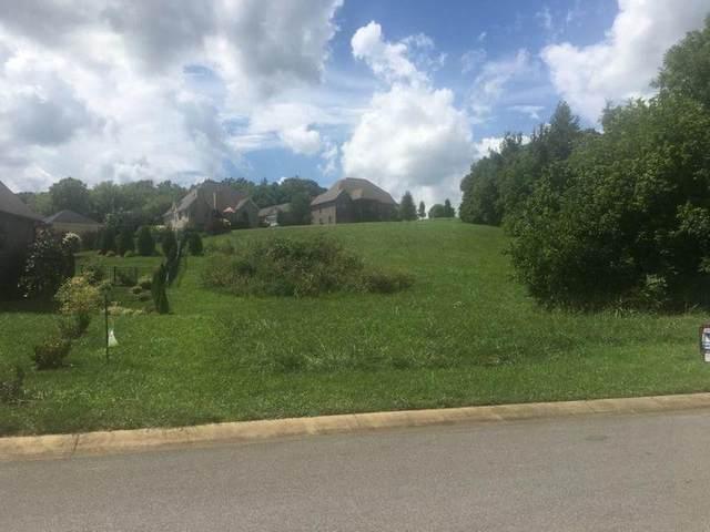 109 Forest Lane, Blountville, TN 37617 (MLS #9918943) :: Red Door Agency, LLC
