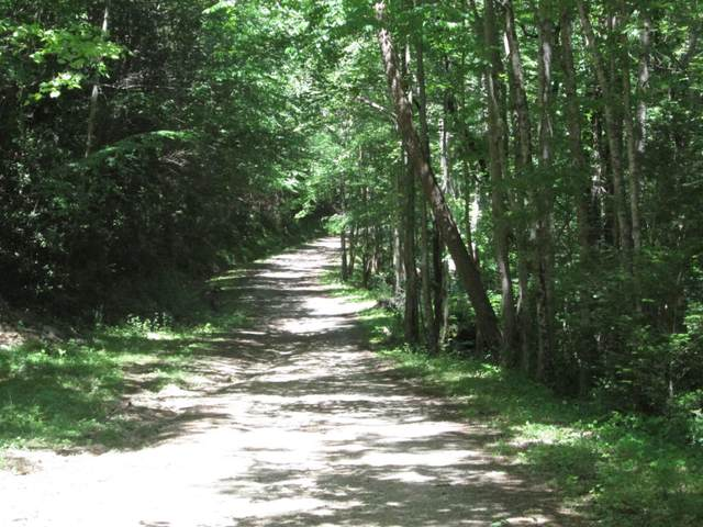 - Bailey Hollow Road, Erwin, TN 37650 (MLS #9918970) :: Red Door Agency, LLC