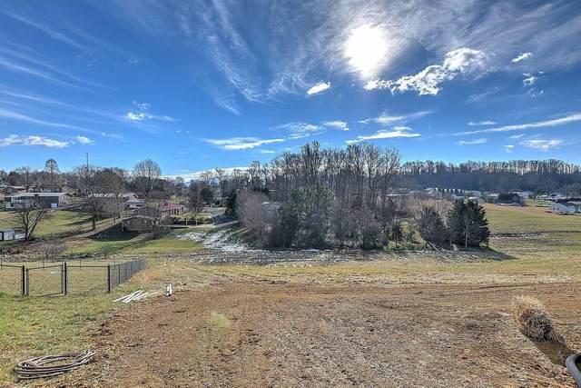 233 Mayor Avenue, Greeneville, TN 37745 (MLS #9918974) :: Conservus Real Estate Group