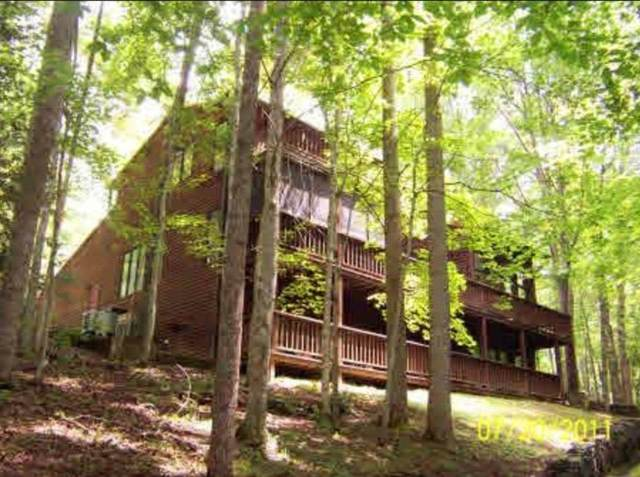 495 Moonshadow Trail, Haysi, VA 24256 (MLS #9919004) :: Highlands Realty, Inc.