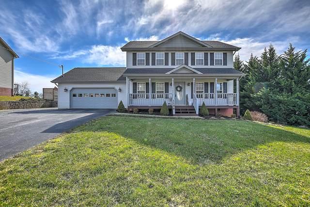 1146 Martins Glen Lane, Gray, TN 37615 (MLS #9919023) :: Red Door Agency, LLC