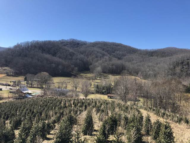 Tbd Highway 143, Roan Mountain, TN 37687 (MLS #9919070) :: Conservus Real Estate Group
